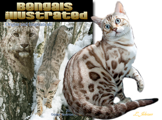 The Snow Bengal